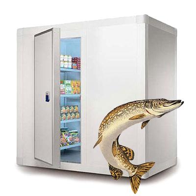 Холодильное оборудование для хранения рыбы